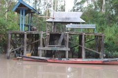 orangutans_tours_11_20140516_1720534059