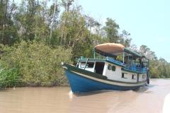 orangutans_tours_12_20140516_1193097175