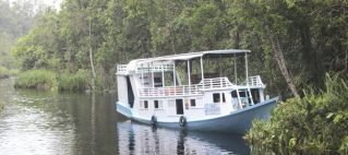 Private Houseboat Orangutan Tour 4d/3n, Central Borneo