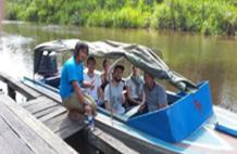 Private Speedboat & Rimba Lodge Orangutan Tour 3d/2n, Central Borneo